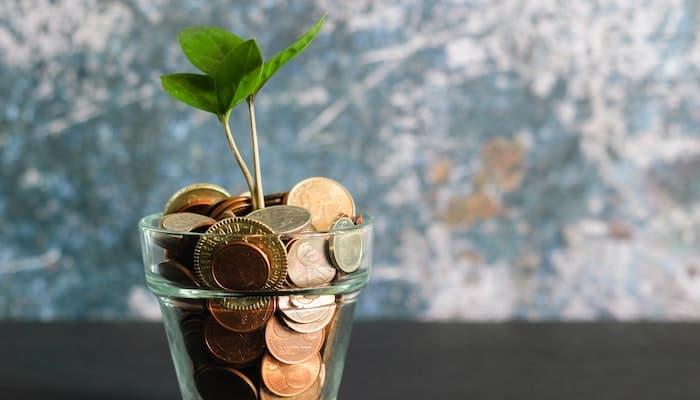 Kan måltidskasser betale sig?